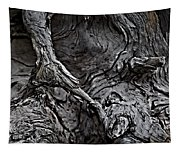Tree Trunk Abstract Tapestry