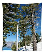 Trees And Snag At Crater Lake Tapestry
