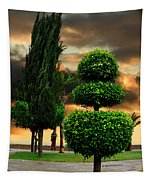 Trees In A Park Of Limassol City Sea Front In Cyprus Tapestry