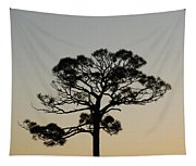 Trees In Sunset Tapestry