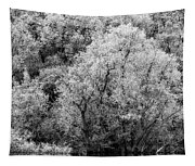 Trees On The River Tapestry