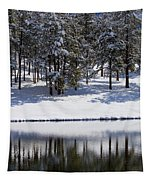 Trees Reflecting In Duck Pond In Colorado Snow Tapestry