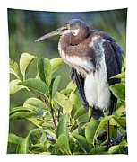 Tri-colored Heron On Guard  Tapestry