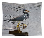 Tri-colored Heron Wading In The Marsh Tapestry