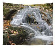 Tributary Of Lost River - Woodstock New Hampshire  Tapestry