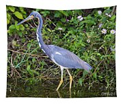 Tricolored Heron Hunting Tapestry
