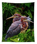 Tricolored Siblings Tapestry