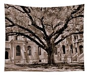 Trinity Episcopal Cathedral Court Yard Tapestry