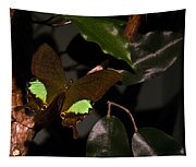 Tropical Buterfly Tapestry