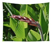 Tropical Flower Buds Tapestry