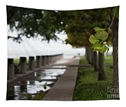 Tropical Storm Hermine Tapestry