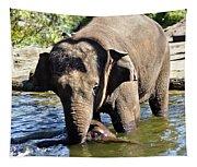 Tukta Swimming Under Mum Tapestry