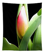 Tulip 1 Tapestry