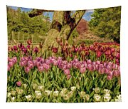 Tulip Bed At Longwood Gardens In Pa Tapestry