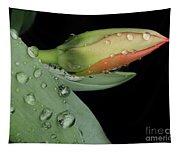 Tulip Bud Tapestry