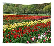 Tulip Fields Tapestry