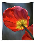 Tulip From Below Tapestry