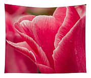 Tulip Layers Tapestry