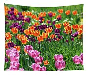 Tulips  6536 Tapestry