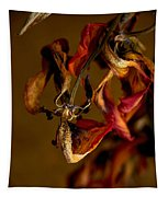 Tulip's Demise - A Natural Abstract Tapestry