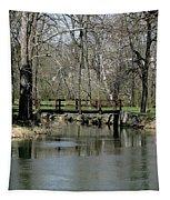 Tulpehocken Creek Tapestry