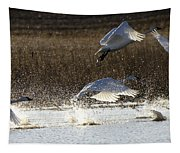 Tundra Swans Take Off 2 Tapestry