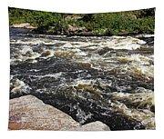 Turbulent Dalles Rapids Tapestry