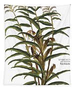 Turkish Corn, 1735 Tapestry
