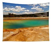 Turquoise Pool  Tapestry