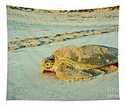 Turtle Day Tapestry