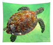 Turtle Day In Titusville,florida Tapestry