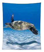 Turtle Flight -  Part 2 Of 3  Tapestry
