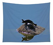 Turtles Tanning Tapestry