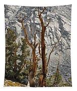 Twin Sticks Tapestry