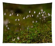 Twinflower Tapestry