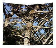 Twisted Branches Tapestry