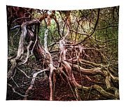 Twisted Tapestry