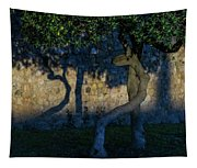 Twisted Early Morning Shadows Tapestry