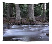 Two Ceders Next To A Mountain Stream Tapestry