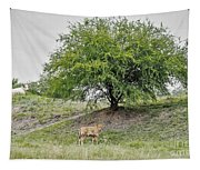 Two Cows And A Tree Tapestry