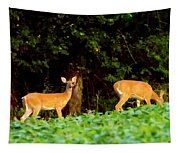 Two Doe Tapestry