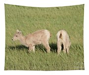 Two Ewes In The Badlands Tapestry