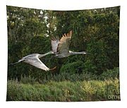 Two Florida Sandhill Cranes In Flight Tapestry