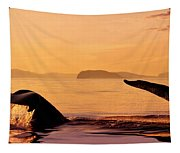 Two Humpback Whales Tapestry