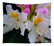 Two Iridescent White Rhoddys Tapestry