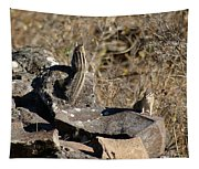 Two Munks On The Rocks Tapestry