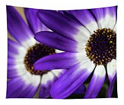 Two Purple N White Daisies Tapestry