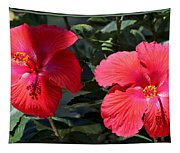Two Red Hibiscus With Border Tapestry