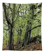 Two Trees In Springtime Tapestry
