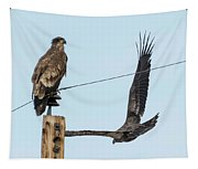 Two Views Of A Juvenile Bald Eagle Tapestry